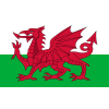 Wales U19 W