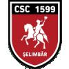 Viitorul Selimbar (Rou)