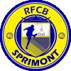 Sprimont B