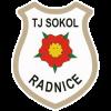 Sokol Radnice