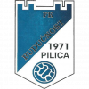 Buducnost Pilica