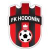 Hodonin
