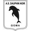 Dauphins Noirs