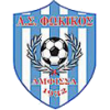 Fokikos FC