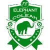 Elephant Coleah